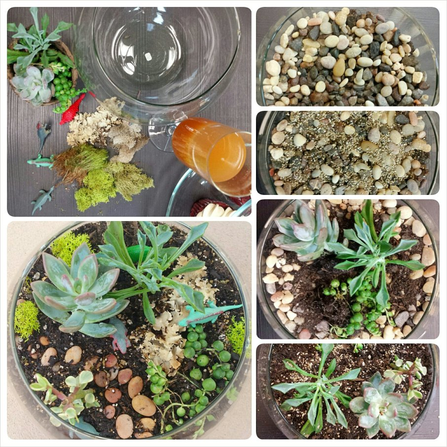 A few of the steps to creating the different terrarium layers.