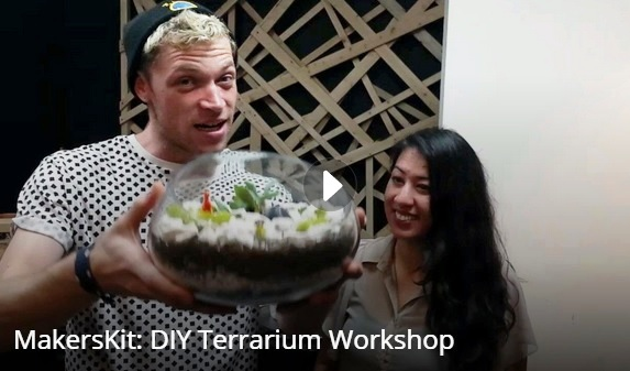 Check out our terarrium-making in action, dinosaurs, mimosas and all!
